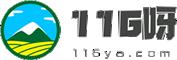 116呀网站大全