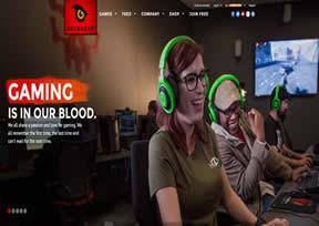 美国的一家游戏公司