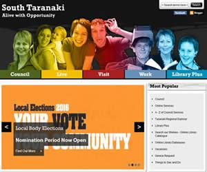 新西兰南塔拉纳基区的议会机构